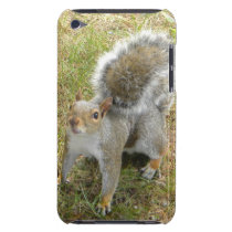 Squirrel iPod Touch Cover