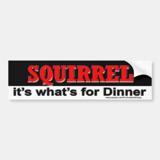 SQUIRREL it's what's for Dinner Bumper Sticker