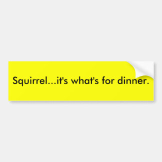 Squirrel...it's what's for dinner. bumper sticker