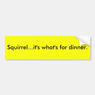 Squirrel...it's what's for dinner. bumper sticker