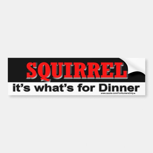 SQUIRREL it's what's for Dinner Car Bumper Sticker