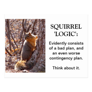 Squirrel Logic Postcard