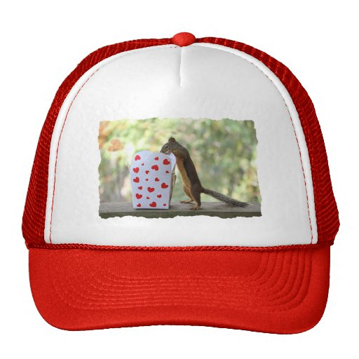 Squirrel Looking Inside Heart Box Hat