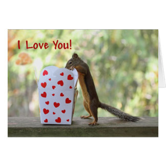 "Squirrel Looking Inside Heart Box, ""I Love You"" Greeting Card"