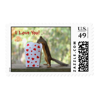 """Squirrel Looking Inside Heart Box, """"I Love You"""" Postage"""