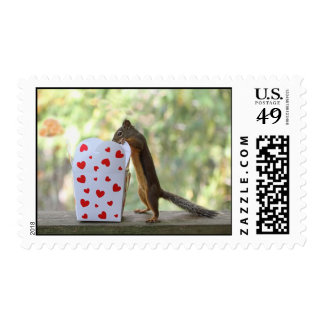 Squirrel Looking Inside Heart Box Stamp