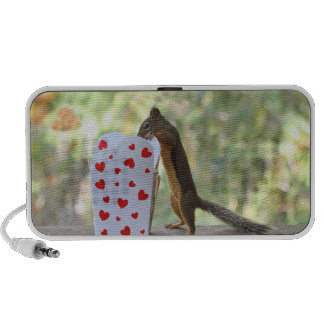 Squirrel Looking Inside Heart Box iPod Speaker
