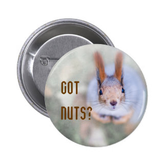 Squirrel looks at you from the bottom up pinback button