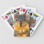 Squirrel Love_ Bicycle Poker Deck