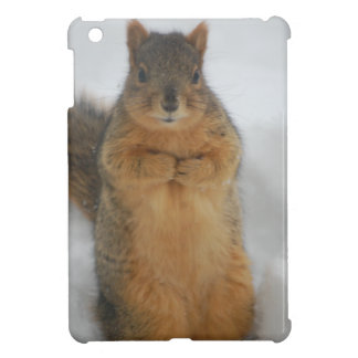 Squirrel Love iPad Mini Cover