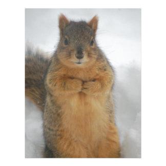 Squirrel Love Letterhead