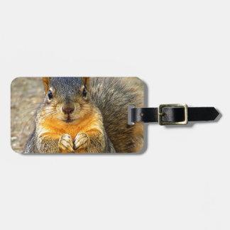 Squirrel Love_ Luggage Tag