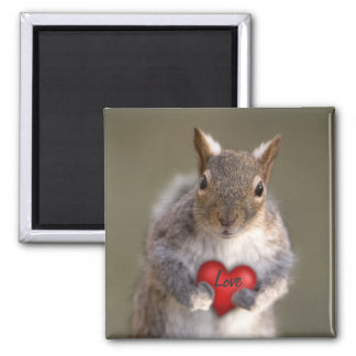 Squirrel  Love Magnet - Square or Round