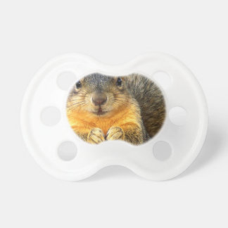 Squirrel Love_ Pacifier