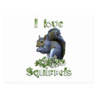 Squirrel Love Postcard
