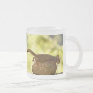 Squirrel Lying Down Photo 10 Oz Frosted Glass Coffee Mug