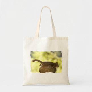 Squirrel Lying Down Photo Tote Bag