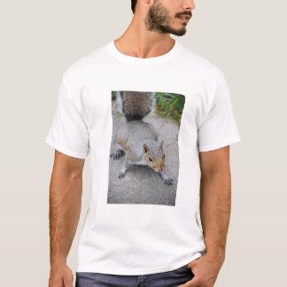 Squirrel Men's Shirt