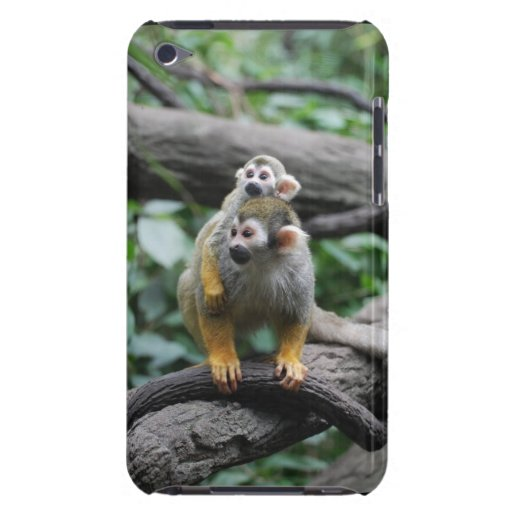 squirrel-monkey-29.jpg iPod touch covers