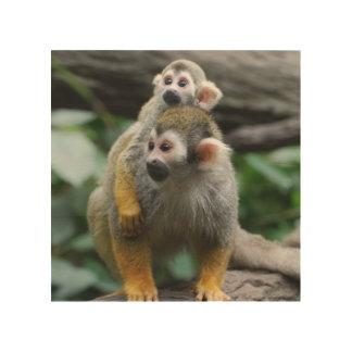 squirrel-monkey-29.jpg wood canvases