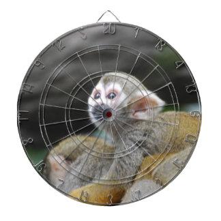 squirrel-monkey-39.jpg dart board
