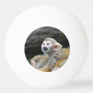 squirrel-monkey-39.jpg pelota de ping pong