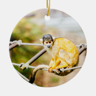 Squirrel Monkey - Animal Photography Ceramic Ornament