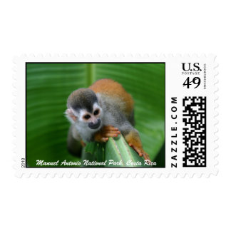 Squirrel Monkey,Costa Rica Postage