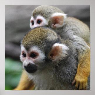 Squirrel Monkey Family Affair Poster