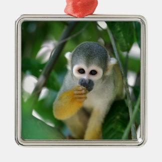 Squirrel monkey metal ornament