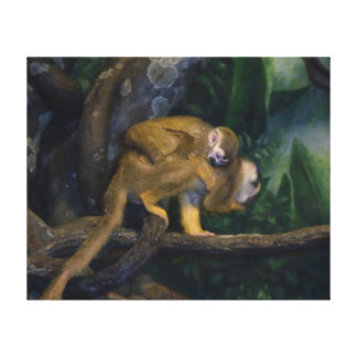 Squirrel Monkey Mother and Baby Stretched Canvas Prints