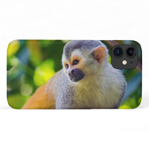 Squirrel monkey on a branch - Costa Rica iPhone 11 Case