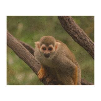 Squirrel Monkey Cork Paper Prints