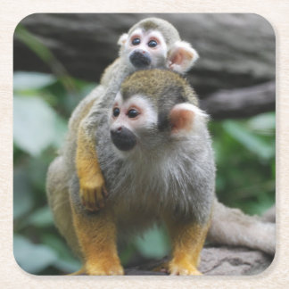 Squirrel Monkey Square Paper Coaster