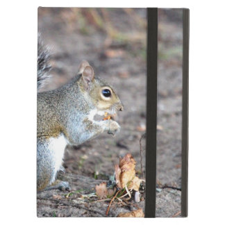 Squirrel Munching on an Acorn Cover For iPad Air