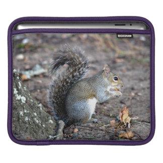 Squirrel Munching on an Acorn iPad Sleeve
