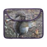 Squirrel Munching on an Acorn MacBook Pro Sleeves