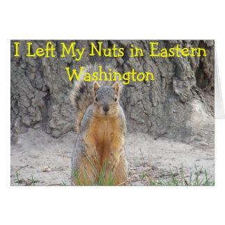 Squirrel Nuts Card
