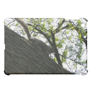 Squirrel on a Branch Cover For The iPad Mini