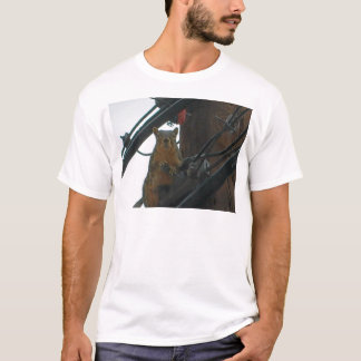 Squirrel on a Pole in Colorado T-Shirt