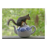 Squirrel on a Teapot Cards