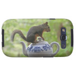 Squirrel on a Teapot Galaxy SIII Cover