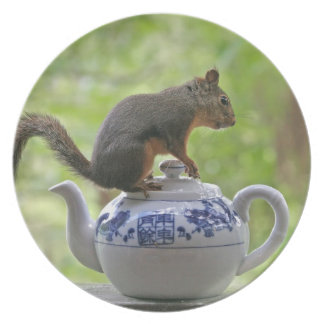 Squirrel on a Teapot Melamine Plate