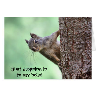 Squirrel On a Tree Greeting Cards
