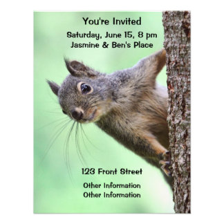 Squirrel On a Tree Announcements