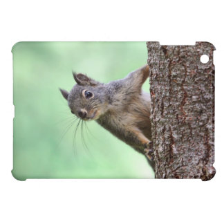 Squirrel On a Tree Cover For The iPad Mini