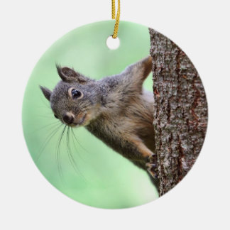 Squirrel On a Tree Christmas Ornament