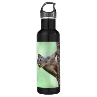 Squirrel On a Tree Stainless Steel Water Bottle