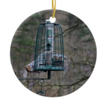 Squirrel on bird feeder ceramic ornament