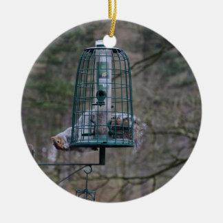 Squirrel on bird feeder ceramic ornament